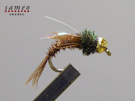 Swimming Pheasant tail Goldhead