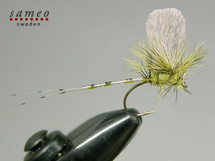 Mayfly dun green drake