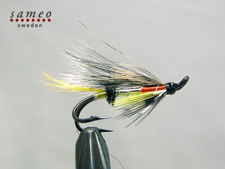 Dusty Miller