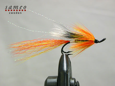 Cascade Shrimp