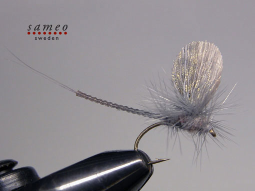 Mayfly blue dun