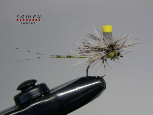 Mayfly spent green drake