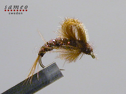 CDC Emerger