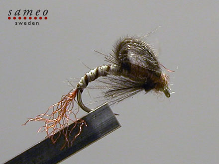 CDC Emerger March Brown