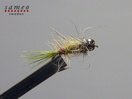 Super grayling  Tungsten