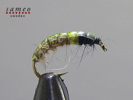 Emin Hydropsyche Green-Hotspot