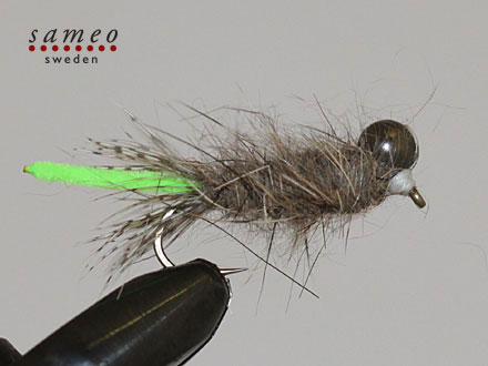 Peeping Caddis light green tail