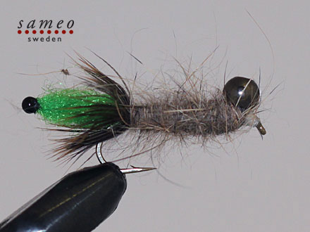 Peeping Caddis green tail