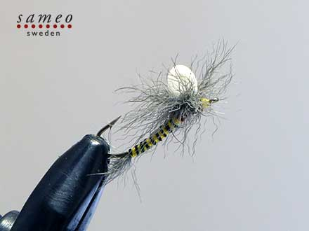 Snowshoe Emerger