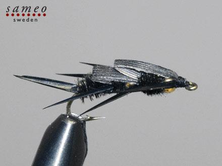 Heavy stonefly