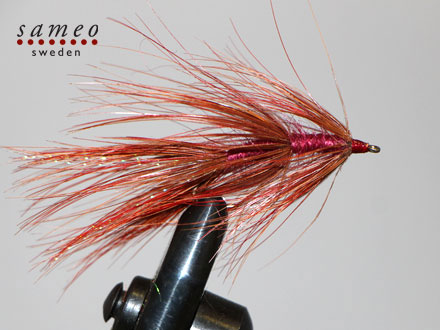 Borsteorm redbody