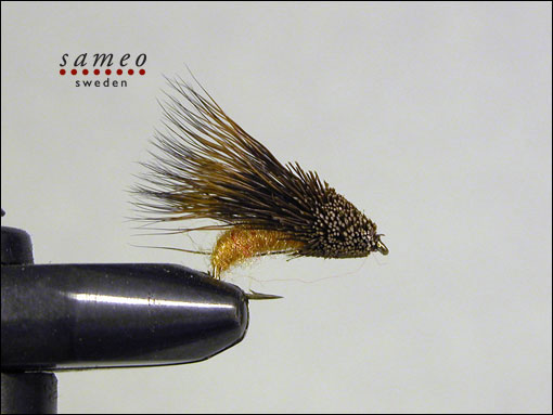 Streaking Caddis