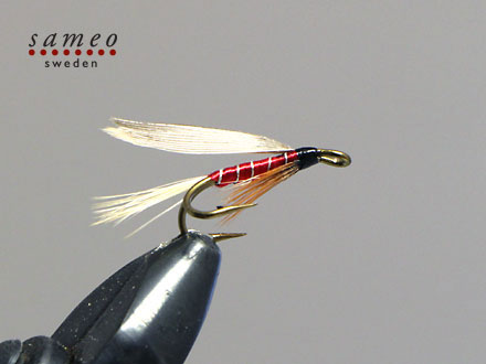 Red Spinner Winged