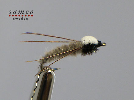 Caddis puppa foam