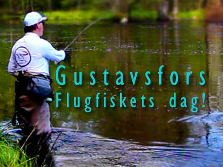 Öringparadiset i Gustavsfors!