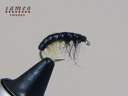 Super larva