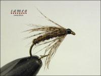 Partridge Brown Spider
