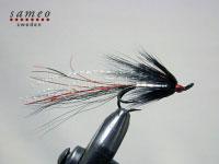 Ally Shrimp