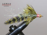 Grizzly Trout